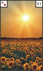 Mystische Lenormandkarte 31 Sonne