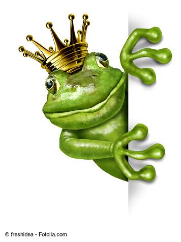 Frosch im Kartenlegen